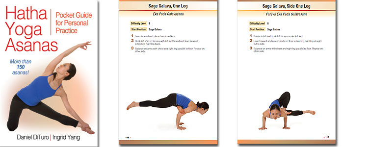 hatha-yoga-pocket-guide.jpg