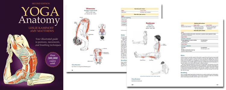 Yoga Anatomy – 2nd Edition