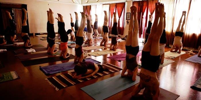 The Yoga Shala Calgary