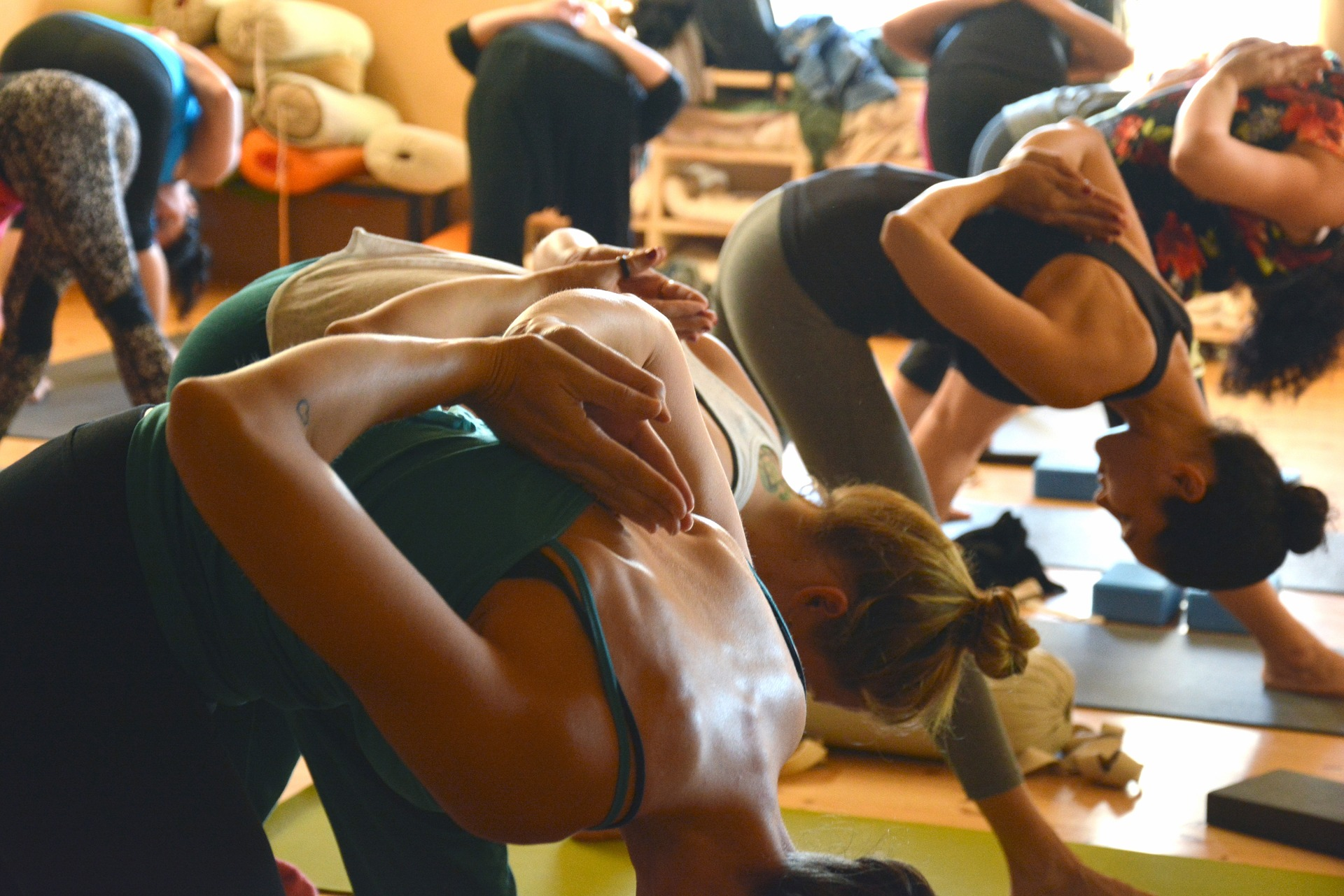2019 Canadian Yoga Conferences And Festivals Ydc Community Blog